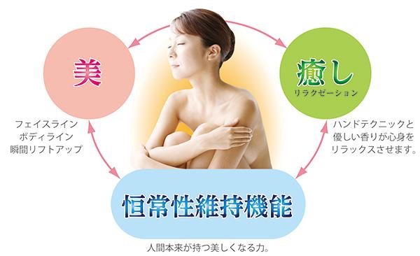 美・癒し(リラクゼーション)・恒常性維持機能